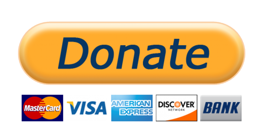 LARGE paypal donate button large alpha